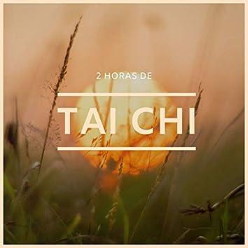2 Horas de Tai Chi: Música para Encontrar el Equilibrio Emocional y la Paz Mental