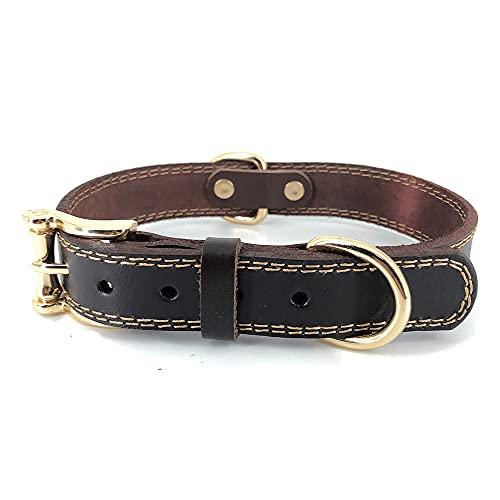 Collar para Perros de Piel auténtica marrón para Cachorros de Perros pequeños, medianos y Grandes (M)