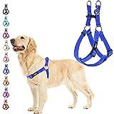 Best Dog Harnesses - PUPTECK No Pull Dog Harness Soft Adjustable Basic Review