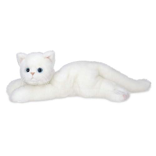 White Kitten Amazon Com
