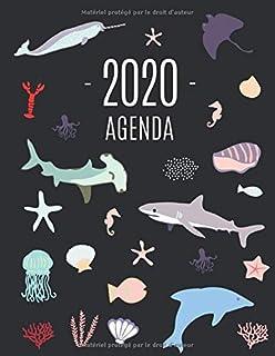 Poisson Océanique Agenda 2020: Agenda Quotidien | Janvier à Décembre 2020 | Calendrier avec Espaces pour Notes