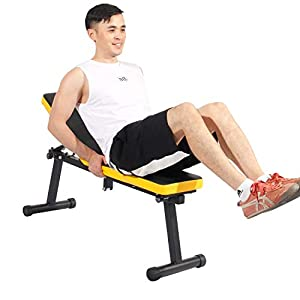 DlandHome Home Gym Adjustable Bench Weight Bench Adjustable Folding Sit Up Incline Exercise Dumbbell Bench Height Adjustable, Multi-Functional Strength Training Fitness Workout Station, PSBB003