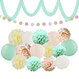 XFunino Baby Shower Decorations, Teal Pink Birthday Themed Party Decorations, Paper Lantern Decorative Tissue Paper Pom Pom Garland 11.8ft Gold Glitter Party Pack, 18 Pcs
