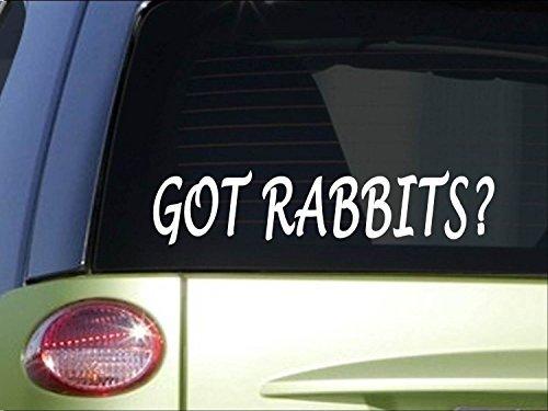 Tollyee Car Decals en Stickers Kreeg konijnen *H978* 8