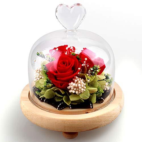 Swonuk Konservierte Rose, Ewige Rose LED Lichterkette Hochzeit, Geburtstag, Valentinstag, Muttertag, Jubiläum - Echte Rosen