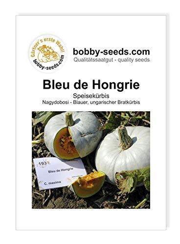 Bleu de Hongrie, Blauer Ungar Kürbissamen von Bobby-Seeds, Portion