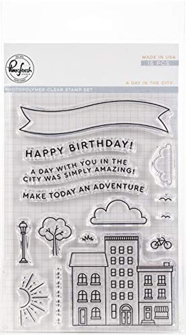 Pinkfresh Studio PFCS3918 Clear Stamp Set 4