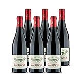 Cairanne Rouge 2019 - Domaine Brunely - Vin AOC Rouge de la Vallée du Rhône - Lot de 6x75cl - Cépages Syrah, Grenache