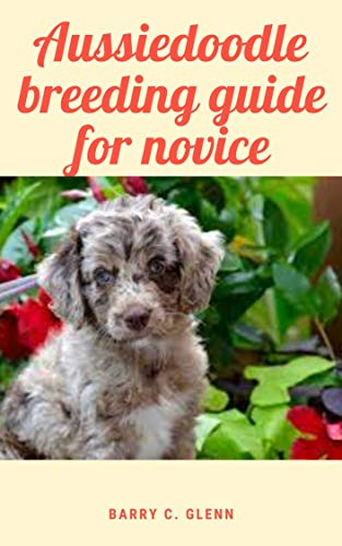 Aussiedoodle Breeding Guide For Novice: Dog, (Canis lupus familiaris), is a domestic mammal of the family Canidae (order Carnivora) (English Edition)