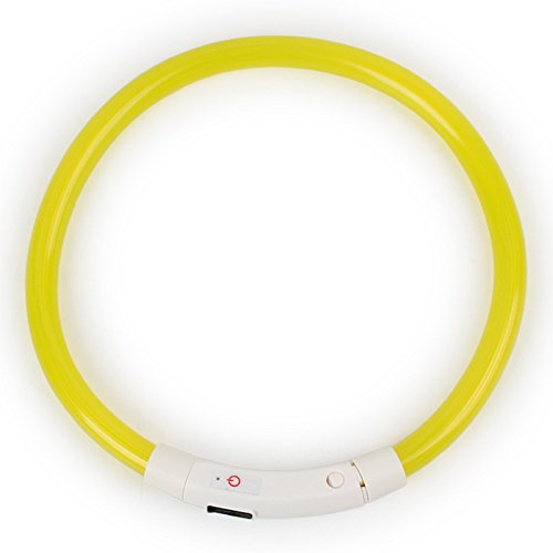 Fashionwu Collar de perro con luz LED recargable e impermeable, collar de seguridad nocturna