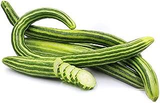 Armenian Striped Snake Cucumber Seeds - 75+ Seeds