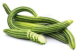 Image of Striped Snake Armenian Cucumber Seeds