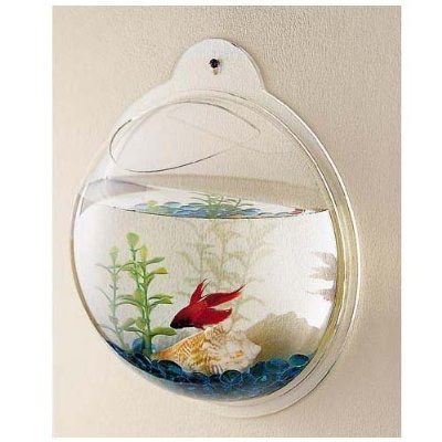CNZ Wall Mounted Acrylic Fish Bowl, 11.5-inch