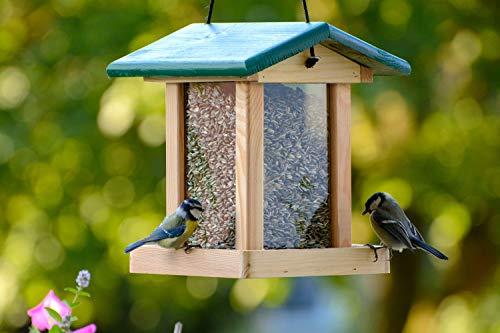 dobar 21097e Futterstation Vogelhaus aus Holz für Vögel, 22 x 25 x 28 cm, grün - 4