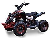 SYX MOTO Bruiser Kids Mini ATV 36V 800W Dirt Quad...