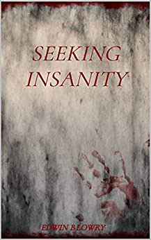 Seeking Insanity by [Edwin B. Lowry, Edwin B Lowry]