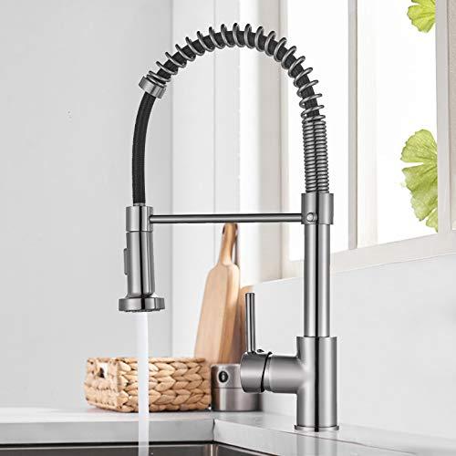 Rozin Küchenarmatur Ausziehbar Einhebelmischer Spültischarmatur mit ausziehbarer 2 Funktion Brause 360°Spirale Gebürstetem Nickel Messing Küchenarmatur Wasserhahn