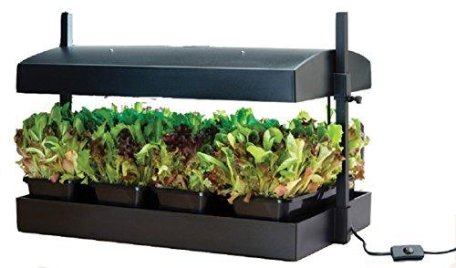 Greenfingers Luce da giardino per coltivazione domestica Nero