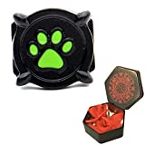 3dcrafter Chat Noir Bague Enfants Brillent dans Le Noir Cat Noir Ring for Cosplay (49-50)