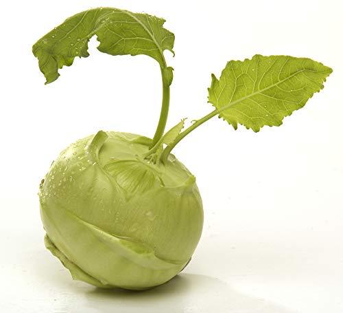 Obst & Gemüse Bio Kohlrabi weiss / blau (2 x 1 Stk)