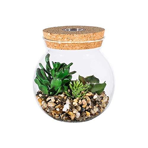 KinkGlass Kunstpflanzen Dekorations Sukkulenten LED Glühbirne Glas für Tischdeko Haus Wohnzimmer Schlafzimmer Büro Deko (B#)