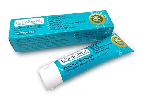Biomineral Salt Ayuravedic Lemongrass Toothpaste Dr.W.Price's Repair &...