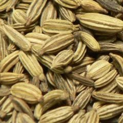 Fennel Seed Ground Max 50% OFF - Wildcrafted vulgare 454g At the price O Foeniculum =