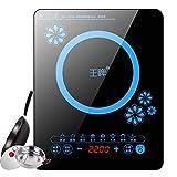 Cocina de inducción, cocina de inducción portátil 2200W, placa de panel de cristal negro con pantalla LED Enchufe eléctrica portátil, control táctil del sensor, temporizador, a (color: b) fengong