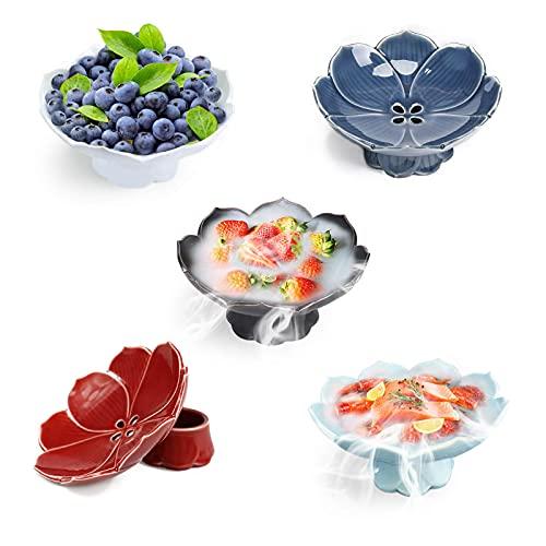 Cuenco de fruta, bandeja de frutas, de porcelana, ideal para la cocina, cenas en familia, acogida de amigos, fiestas, juego de 5 piezas