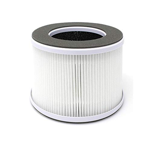 Como Direct Ltd /™ Nilfisk Filtro HEPA H12