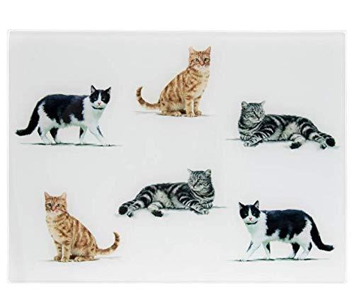 Tagliere in vetro a forma di gatto per cucina, 40 x 30 cm