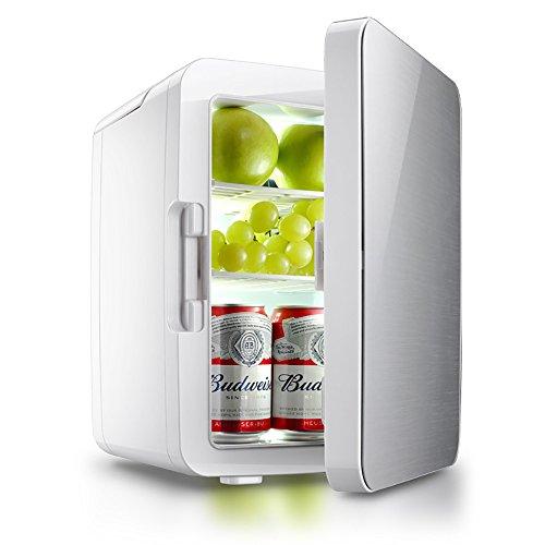 GHL Draagbare mini-koeler, 10 liter, koelthermostaat, 220 V en 12 V voeding, geschikt voor familie, kantoor en auto zilver