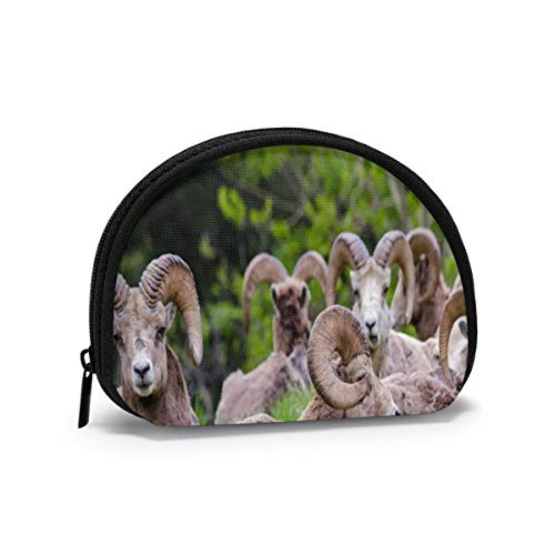 Bighorn Sheep Ovis Canadensis Herd Animals Wildlife Small Coin Purse for Women Cute Coin Pouch for Girl Mini Coin Bag Storage Bag Shell Wallet