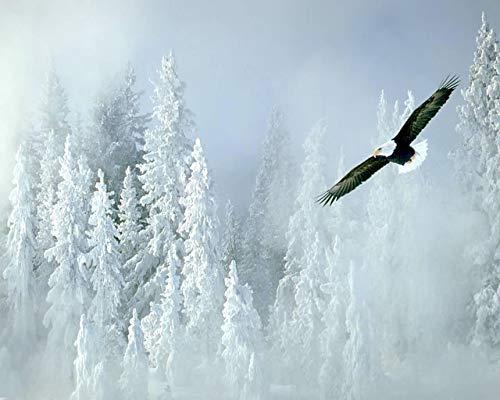 Digitale schilderij met vliegende vleugel in de sneeuw, geschenk voor decoratie van het huis, handgeschilderd op canvas, muurschilderij voor volwassenen en kinderen, 40 x 50 cm