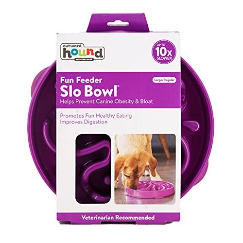 Outward Hound Slow Feeder Dog Bowl