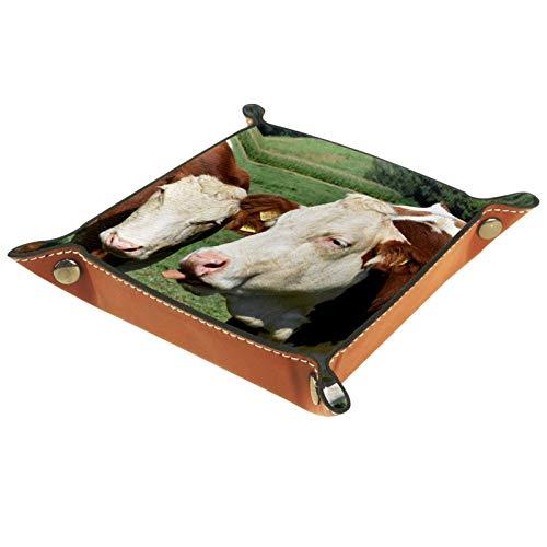 YATELI Caja de Almacenamiento pequeña, Bandeja de Valet para Hombre,Vacas Pasto Animal Ganado Naturaleza,Organizador de Cuero para Llaves de Caja de Monedas