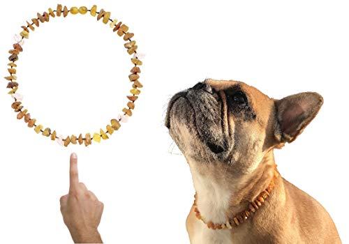 amberdog Hunde Bernstein Kette gegen Zecken - Rosenquarz Art.Nr.00518-L Größe 44cm Bernstein Hunde Halsband