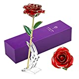 24k Gold Rose for Anniversary Unique Gifts, Eternal Long Stem Gold...