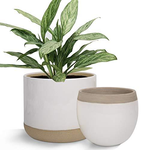 Weiße Keramik-Blumentöpfe – 16,5 cm, 2 Blumentöpfe für den Innenbereich, Pflanzgefäß mit beigefarbenen und rissigen Details