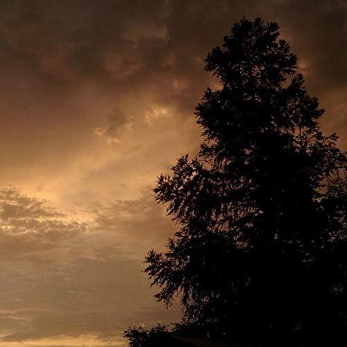Cloudy Dayz