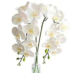 2pcs Real Touch Orchids Stems Artificial Flowers Fake Phalaenopsis Orchid for Table Centerpiece Home Kitchen Wedding Party Decoration (White)