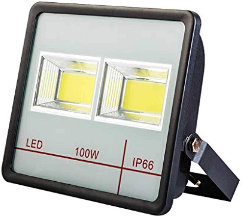 Sgxpjj Flutlichtstrahler LED 50-200W Floodlights 220V Warmweies Tageslicht PI66 Wasserdicht High Output 5000LM [Energieklasse A +] (Farbe   100w, gre   Daylight Weiß)