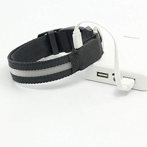 HN LED Collier De Chien De Charge USB Collier De Chien De Charge Teddy Lumineux Fournitures pour Animaux De Compagnie S: 2.5 * 40Cmm: 2.5 * 48Cml: 2.5 * 56Cm,Black,L