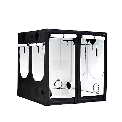 Armario de cultivo interior HOMEbox® Evolution PAR+ Q240 (240x240x200cm)