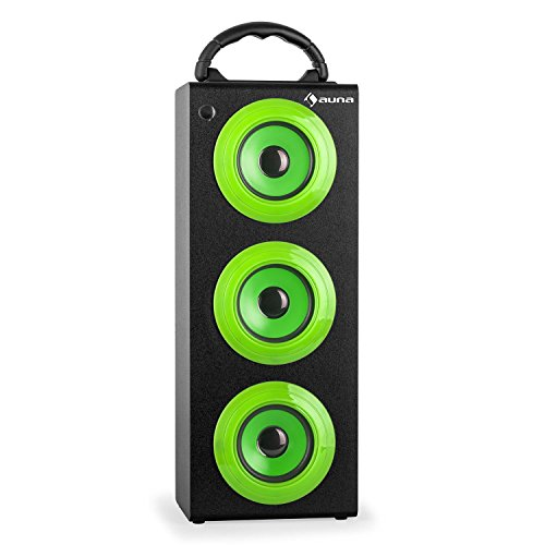 auna Beachboy XXL - Bluetooth-Lautsprecher, tragbarer Lautsprecher, Box, UKW-Radio, USB-Port/SD-Slot, LED-Display, AUX, Tragegriff, Akku, USB-Kabel, Fernbedienung, schwarz-grün