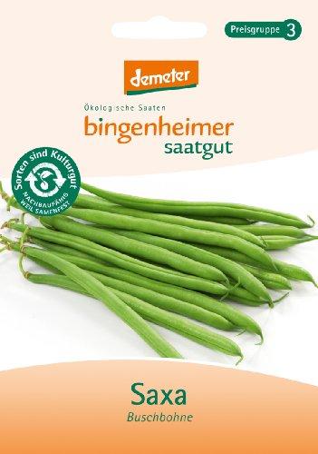 Bingenheimer Saatgut - Buschbohne Saxa - Gemüse Saatgut / Samen