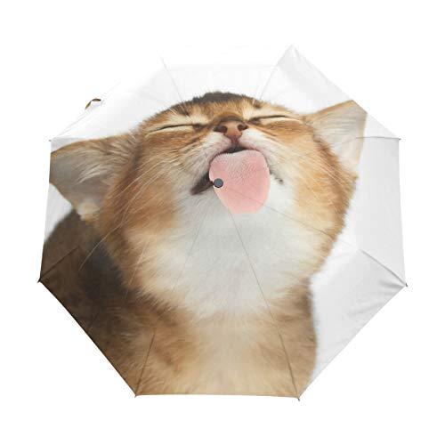 Kompakter Reise-Regenschirm mit niedlicher abessinischer Katze, Leckschutz, automatisches Öffnen und Schließen, winddicht, Anti-UV