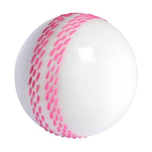 GRAY-NICOLLS Velocity Cricketball, Weiß