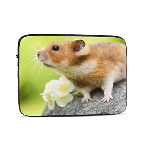 Macbook Pro A1989 Case Cute Hamster On A Stone Mac Book Pro Accessories Multi-Color & Size Choices 10/12/13/15/17 Inch Computer Tablet Briefcase Carrying Bag