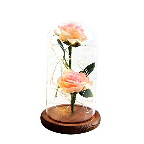 Doubleer Fleurs Roses en Soie dans Un dôme en Verre avec Cadeau de guirlandes Lumineuses LED Anniversaire Saint Valentin Fête des Mères Noël